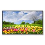 LCD панель NEC MultiSync® X462HB