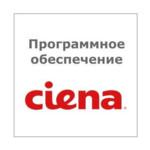 Лицензия для сетевого оборудования Ciena Site Manager RTU