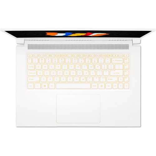 Ноутбук Acer ConceptD 3 CN315-72G-79N9 (NX.C5YER.001)